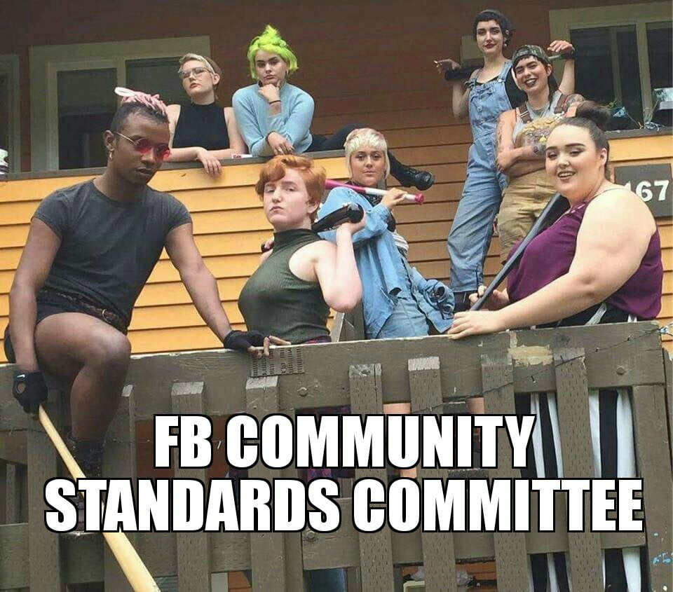 Facebook Community Standards Committee Meme